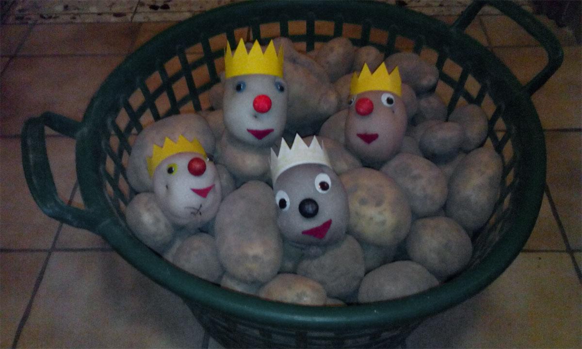 Die Kartoffel war Thema in der Gemeindebücherei Bilshausen.